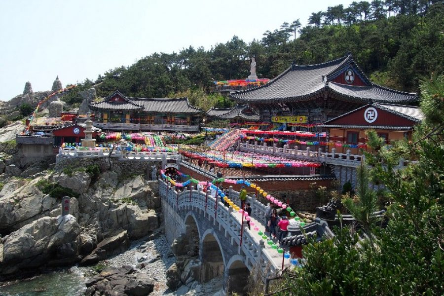 Falling in love with South Korea