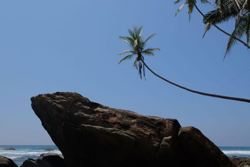 sri lanka travel summersalt yoga