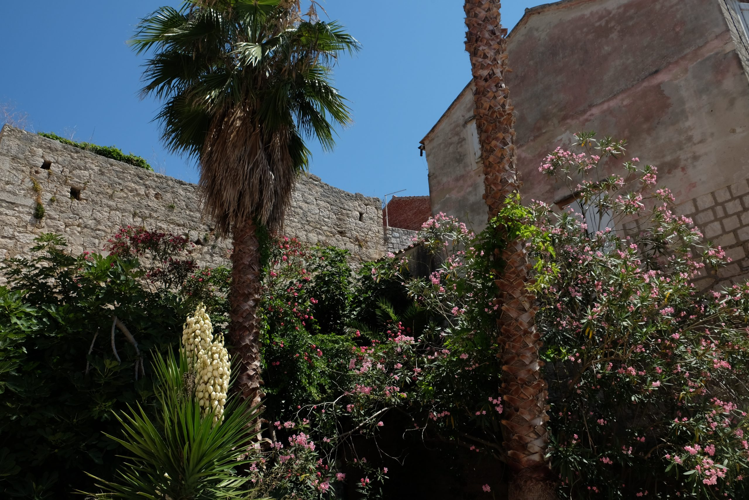 The Secret Gardens of Vis Island